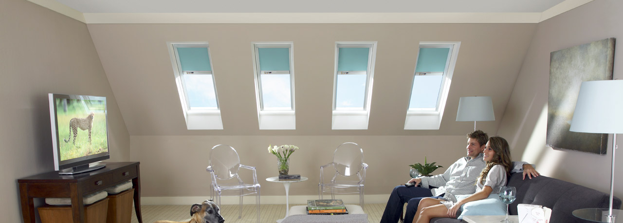 Skylights for the bonus room